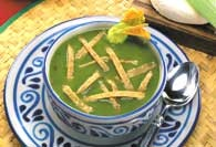 Picture of Cilantro and Squash Flower Soup Mexican Recipe - Item No. 446-cilantrosquashsoup