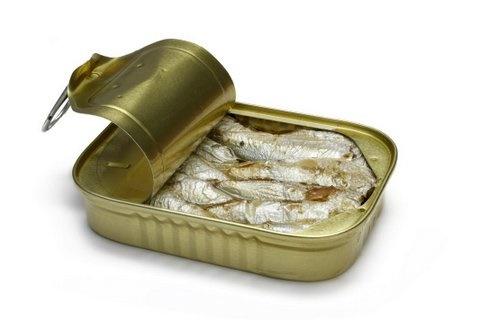 Picture of Sardine Pudding Recipe- Item No.609-sardine-pudding