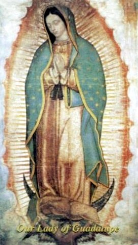 Picture of Our Lady of Guadalupe Holy Card - Wallet Size (10 units) 3.5'' x 2.38'' - Item No. 61005