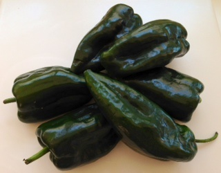 Picture of Chile Poblano Fresh Peppers also called Ancho or Pasilla Chiles - Item No. 77745-31212